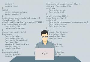 programista prestashop